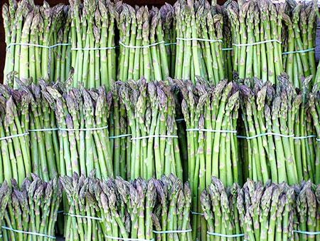 خواص درمانی مارچوبه، گیاهی گران قیمت + تاریخچه
