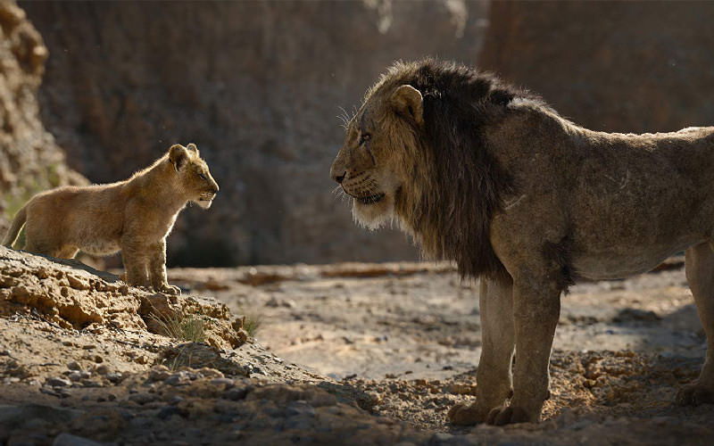 نقد فیلم The Lion King