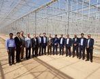 بازدید عضو هئیت مدیره بانک کشاورزی از طرح های بانک درمنطقه آزاد ارس