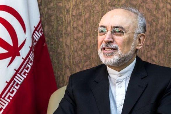 واکنش دولت به تحریم رئیس سازمان انرژى اتمى