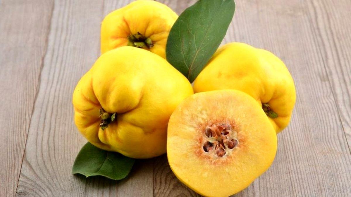 کاهش وزن و رفع بوی بد دهانتان را به دستان این گیاه بسپارید