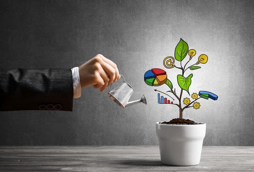 مدیریت دارایی