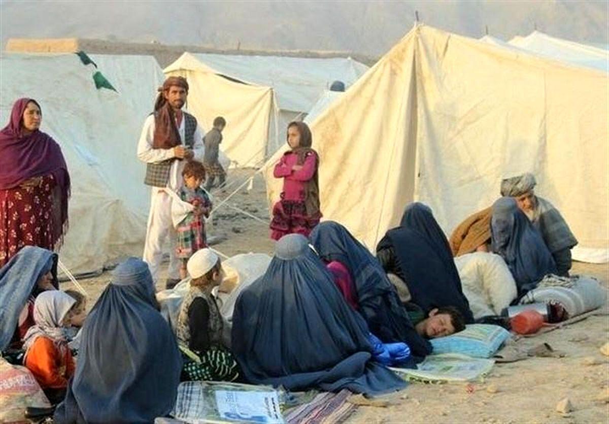 نجات جان ۴۸۱ تبعه افغان در فارس