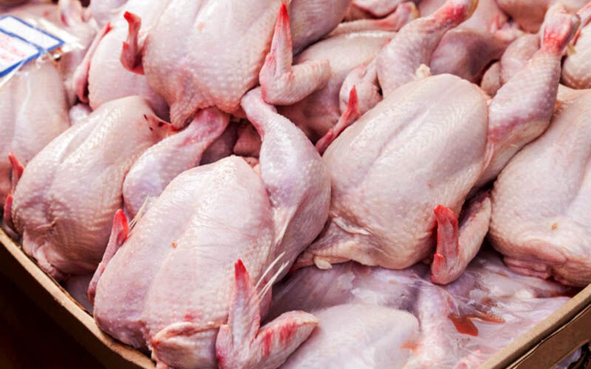 احتکار کننده 3 هزار و 500 کیلوگرم مرغ در تهران دستگیر شد