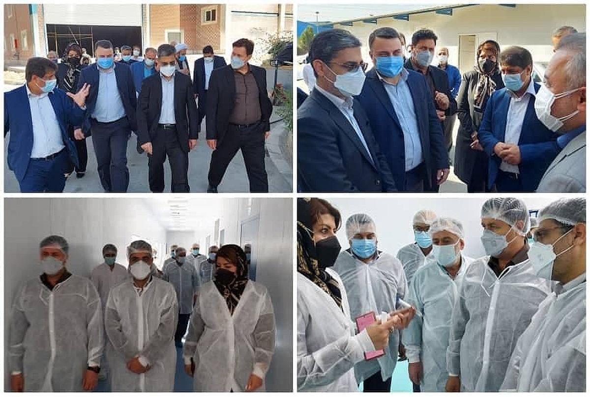 بازدید معاون وزیر صمت از یک واحد تولیدی داروسازی با مشارکت سرمایه گذار خارجی