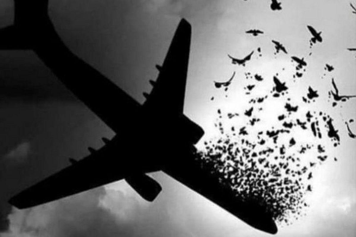 سقوط هواپیمای مسافربری پاکستان +جزئیات و عکس