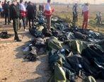جانباختگان سانحه ۷۳۷ شهید محسوب میشوند