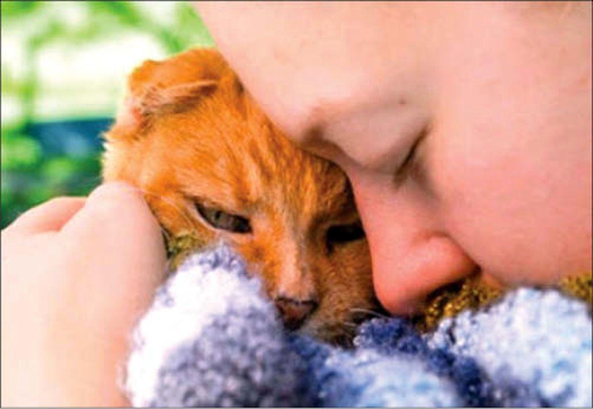 نگهداری این حیوانات ناز در خانه باعث ایجاد سرطان مغز می شود!