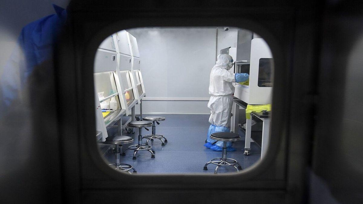 درمان کرونا | خبر خوش محققان ایرانی درباره درمان کرونا + جزئیات