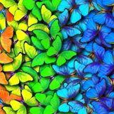 این چهار رنگ بسیار زیبا و شیک که باعث بهبود روحیه میشوند کدامند؟