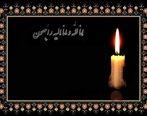 پیام تسلیت رئیس هیات عامل ایمیدرو به مناسبت درگذشت مهندس ترکان
