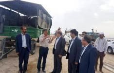 خسارت ۱۰ هزار میلیارد تومانی به کشت و صنعت نیشکر خوزستان