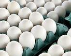 تخم مرغ ارزان می شود