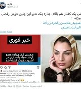 کاربران شبکه اجتماعی الیزابت امینی بازیگر وطن فروش را با خاک یکسان کردند + عکس