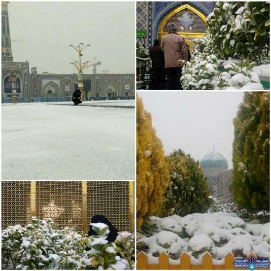 بارش برف پاییزی در حرم مطهر امام رضا(ع)