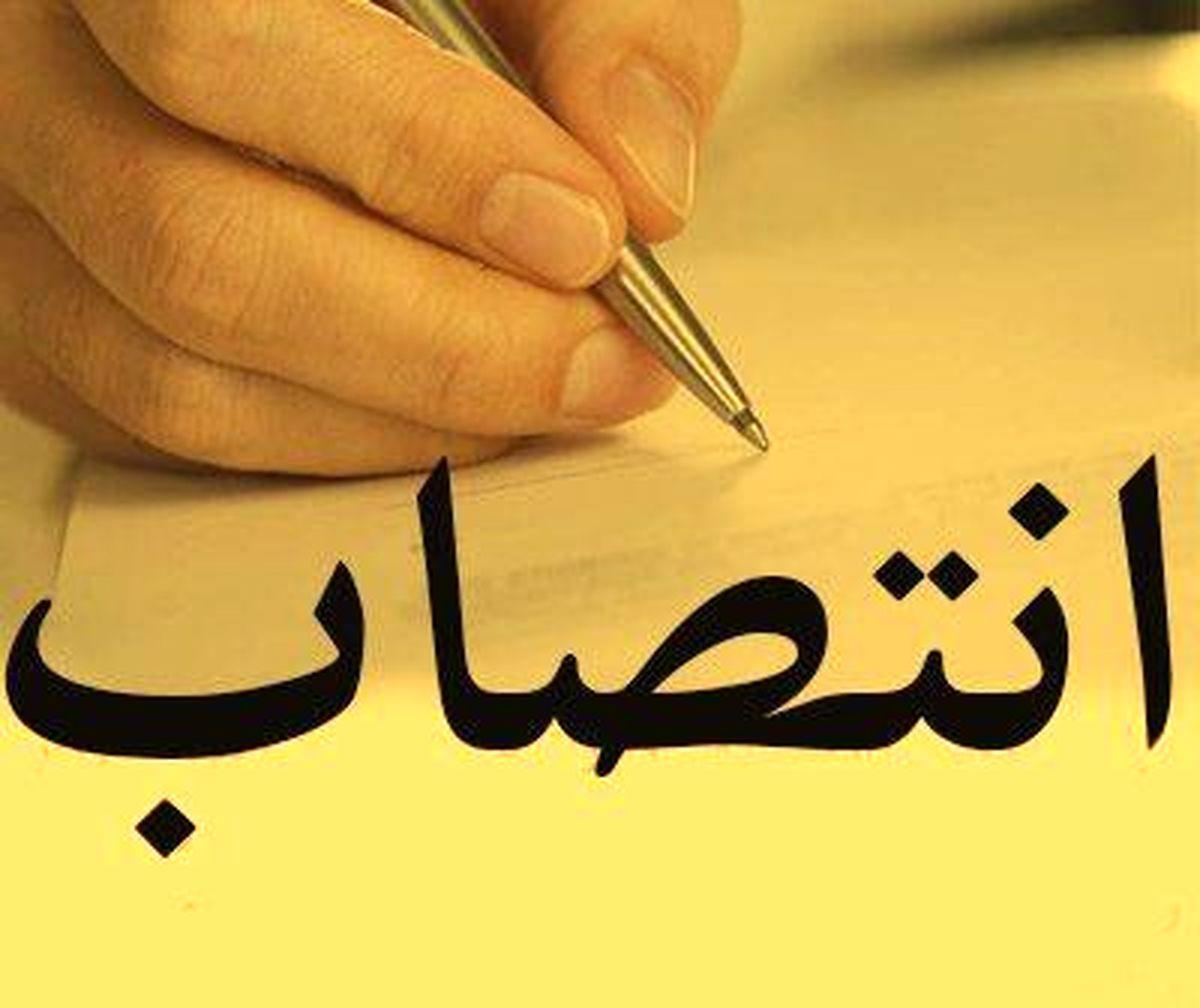 معاون حوزه ریاست کل و روابط عمومی گمرک ایران منصوب شد