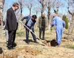 گرامیداشت روز درختکاری در منطقه مرکزی