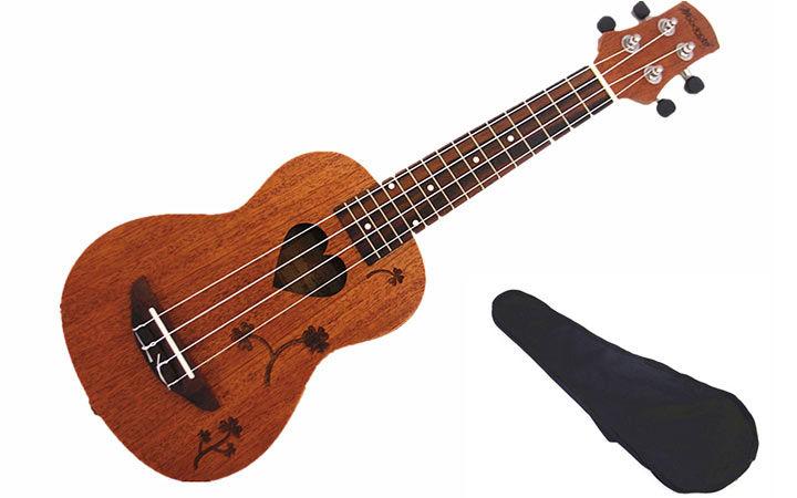 کادو برای نوجوان دختر - گیتار