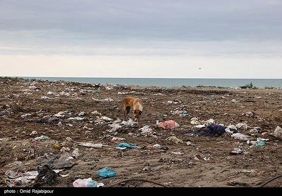 تصاویری زشت و زننده از ساحل دریای خزر