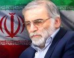 پیام تسلیت مدیرعامل بانک مهر ایران در پی شهادت دانشمند هستهای کشور