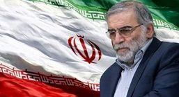 پیام مدیرعامل شرکت ملی فولاد ایران به مناسبت شهادت دکترمحسن فخری زاده