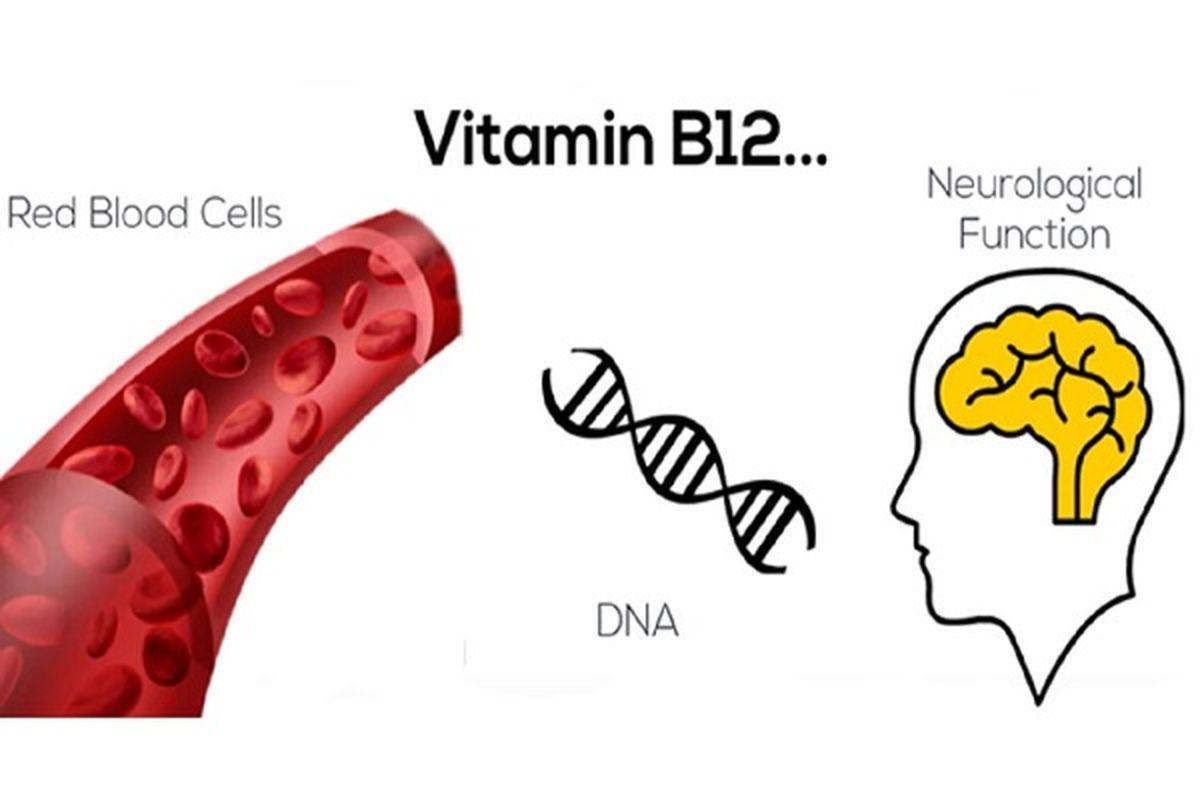 علامت های دردناک کمبود ویتامین ب ۱۲ در بدن چیست؟