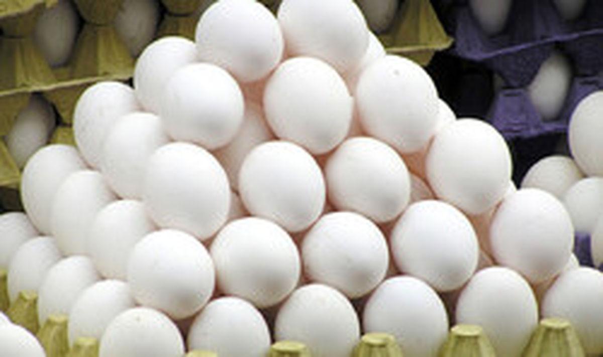 قیمت مصوب مرغ و تخممرغ اعلام شد