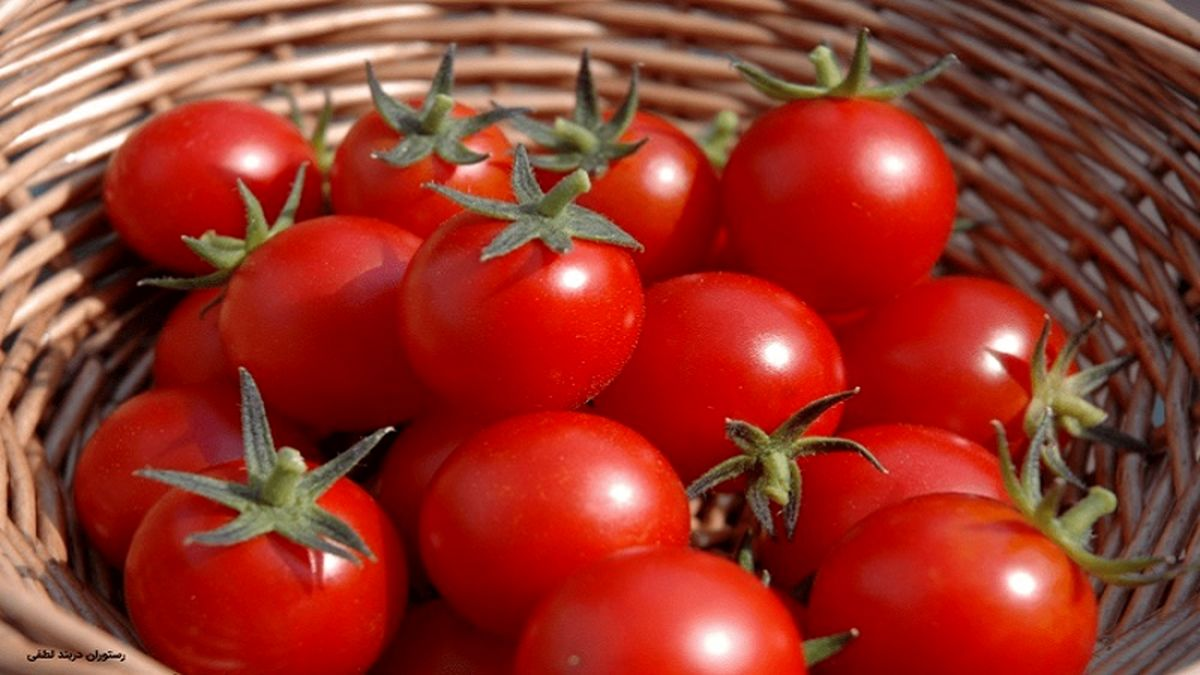 عوارض وحشتناک گوجه فرنگی را بشناسید