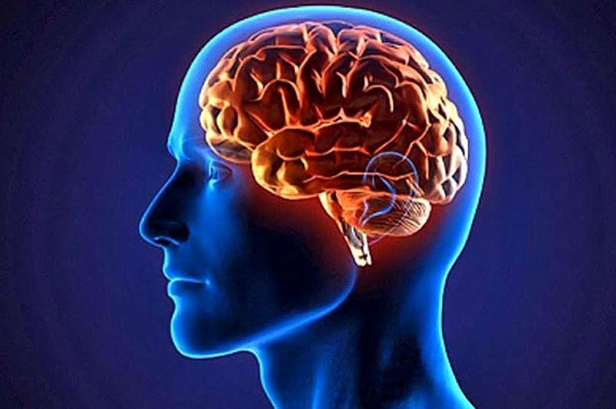 تاثیر  رابطه جنسی روی مغز انسان به 8 شیوه