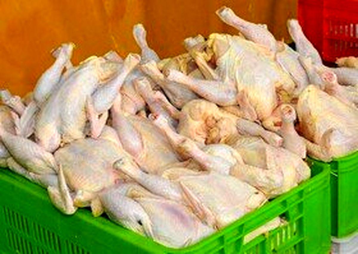 قیمت مرغ به ۱۱ هزار تومان رسید