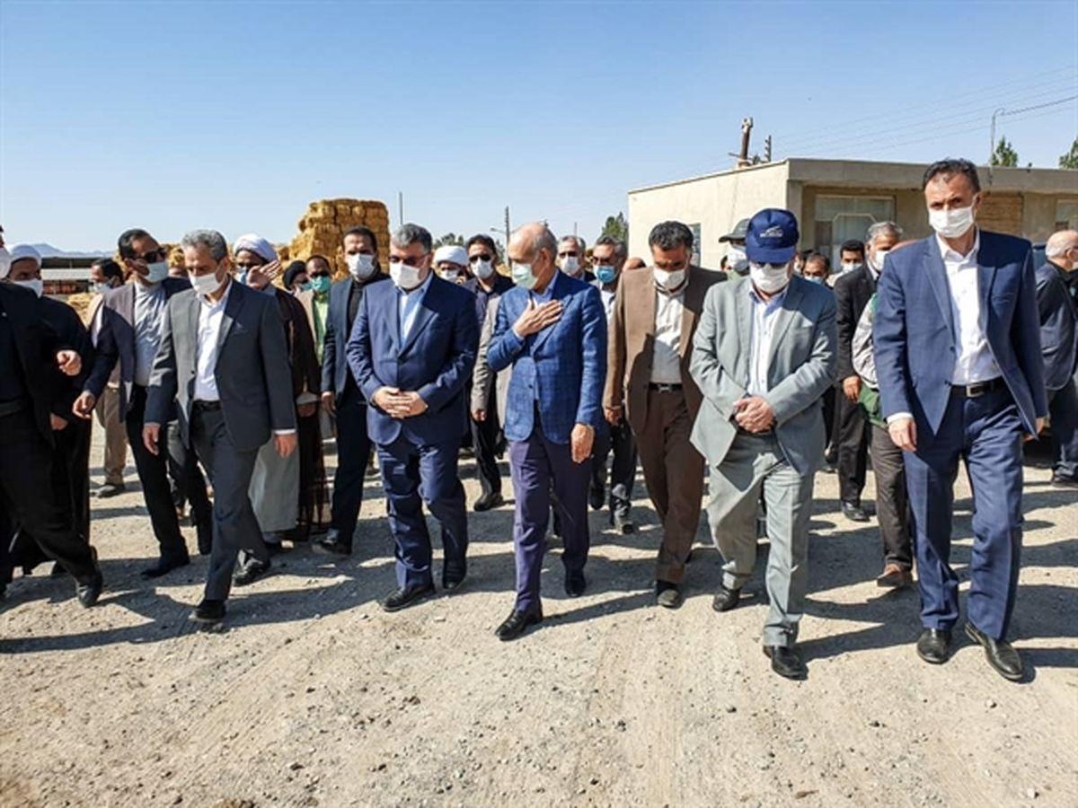 بازدید مدیرعامل بانک کشاورزی از دامداری 1000 رأسی در خراسان جنوبی