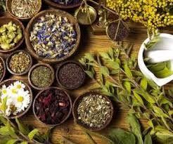 با این داروهای گیاهی به جنگ با کرونا بروید