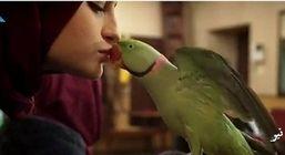 بوسه سارا در پایتخت جنجال ساز شد + عکس
