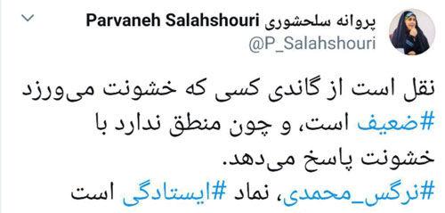 توییت پروانه سلحشوری درباره نرگس محمدی
